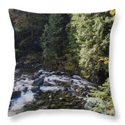 Along The River Bank Throw Pillow
