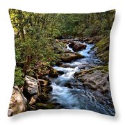 Along The Road Throw Pillow