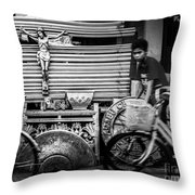 Along The Road Of Life Throw Pillow