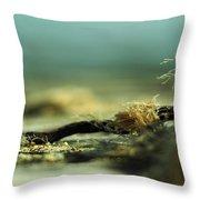 Along The Sea-coast Throw Pillow