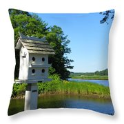 Along The Taunton River Throw Pillow