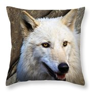 Along The Wall Throw Pillow