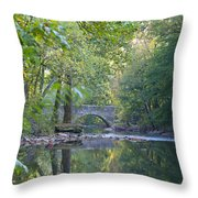 Along The Wissahickon In October Throw Pillow