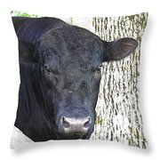 Alot Of Bull Throw Pillow
