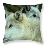 Alpha In The Background Throw Pillow