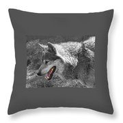 Alpha Male Wolf - You Look Tasty 2 Throw Pillow
