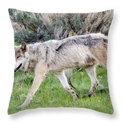 Alpha Wolf On The Move Throw Pillow