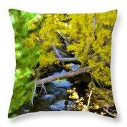 Alpine Creek  Throw Pillow