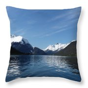 Alpine Mirror Throw Pillow