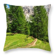 alpine path in Contrin Valley Throw Pillow