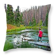 Alpine Pond On Alpine Pond Trail In Cedar Breaks National Monument-utah Throw Pillow