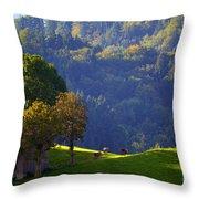 Alpine Summer Scene In Switzerland Throw Pillow