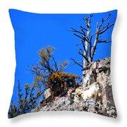 Alpine Wyoming Throw Pillow