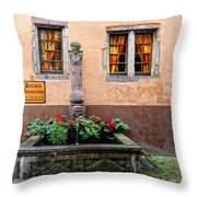 Alsace Fountain Throw Pillow