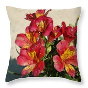 Alstroemeria In Pastel Throw Pillow
