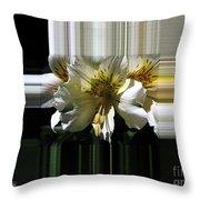 Alstroemeria Named Marilene Staprilene Throw Pillow