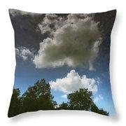 Alternate Dimension Throw Pillow