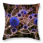 Alternate Universe Throw Pillow by Rona Black
