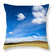 Altiplano In Bolivia Throw Pillow