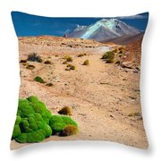 Altiplano Landscape Throw Pillow