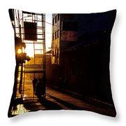 Altiplano Morning Throw Pillow