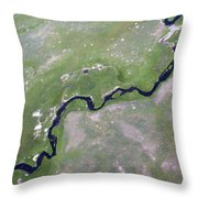 Alum Creek II Throw Pillow