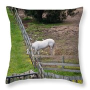 Always Greener On The Other Side Throw Pillow