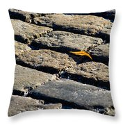 Always Shine And Never Give Up Throw Pillow
