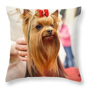 Am I Beautiful? Throw Pillow