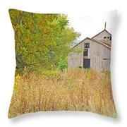 Amana Barn Throw Pillow