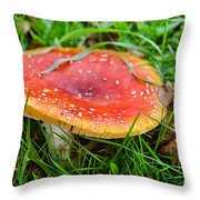 Amanita Muscaria 2 Throw Pillow
