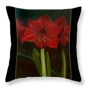 Amaryllis Flower Holiday Card Throw Pillow