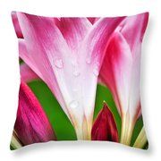 Amaryllis Flowers And Buds In The Rain Throw Pillow