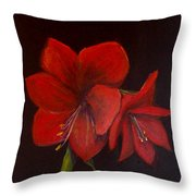 Amaryllis On Black Throw Pillow