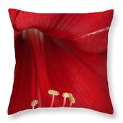 Amaryllis6720 Throw Pillow