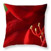 Amaryllis6739 Throw Pillow