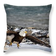 Amazing Bald Eagle  Throw Pillow