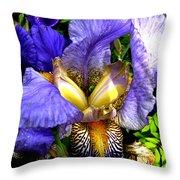 Amazing Iris Throw Pillow
