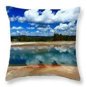 Amazing Nature Throw Pillow