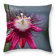 Amazing Passion Flower Throw Pillow