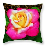 Amazing Red Yellow Rose Throw Pillow