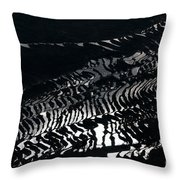 Amazing Rice Terrace In Black And White Throw Pillow