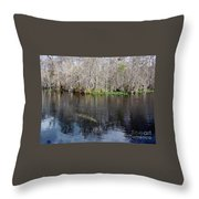 Reflections - On The - Silver River Throw Pillow
