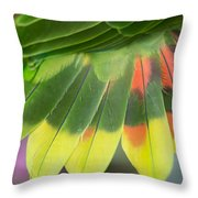 Amazon Parrots Feathers Abstract Throw Pillow