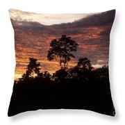 Amazon Sunset Throw Pillow