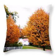 Amber Autumn Twins  Throw Pillow