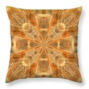 Amber Fractal Throw Pillow