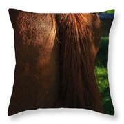 Amber Horse Tail Throw Pillow