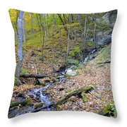 Amber Malanaphy Springs Throw Pillow