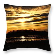 Amber Skys Four Throw Pillow